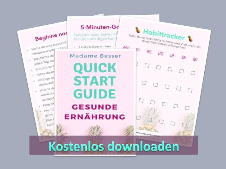 Quick Start Guide Vorschau